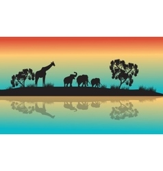 Silhouettes of african animals in morning vector