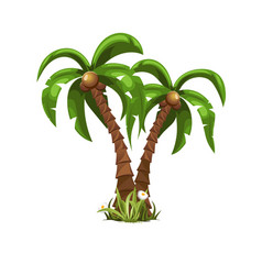 two beautiful palm trees vector image