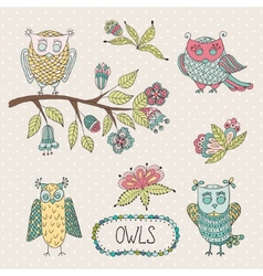 Cute cartoon owls flowers brunche vector image vector image