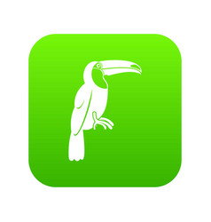brazilian toucan icon digital green vector image