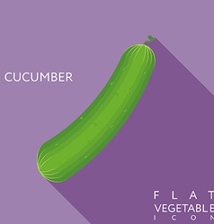 Cucumber flat icon with long shadow vector
