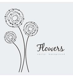 Delicate flowers vector