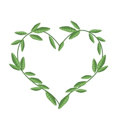 Green Vine Leaves in Beautiful Heart Shape vector