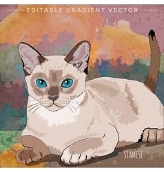 House cat vector