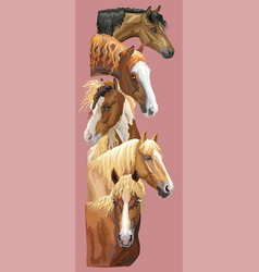 postcard with horses 4 vector image