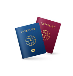 Realistic international passport with globe sign vector
