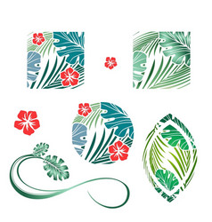 Tropic palm leaves and flower design collection vector