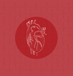 White human heart on substrate vector