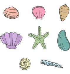 Sea shells and starfish vector image vector image