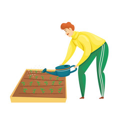 A man is watering plantings on beds from vector