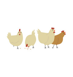 cute farm chicken hen bird group isolated vector image