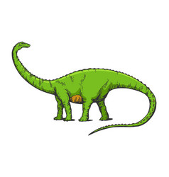 diplodocus dinosaur sketch engraving vector image