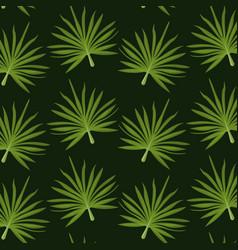 pattern color set decorative of palm irregular vector image
