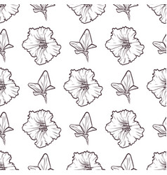 Petunya seamless pattern of flowers vector