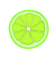 realistic lime citrus slice vector image