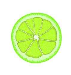 Realistic lime citrus slice vector