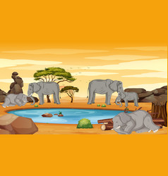 Scene with many elephants in dry land vector