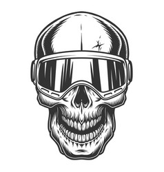 skull in the ski glasses vector image