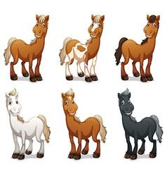 Six smiling horses vector