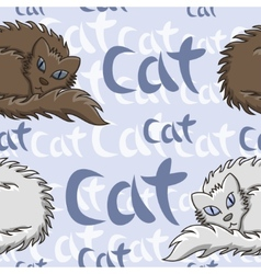 Dark Brown And White Fluffy Cat Seamless Pattern vector image