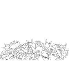 peony flowers black white bottom border frame vector image vector image