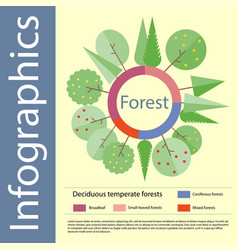 forest info-graphics in flat style vector image vector image