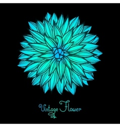 Bright Dahlia Flower Isolated for design vector image