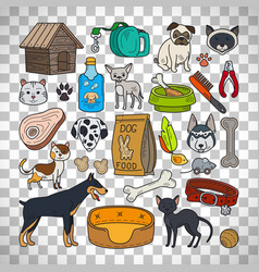 Cats and dogs on transparent background vector