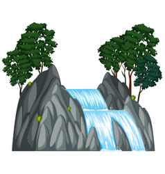 Waterfall with two trees on the rock vector