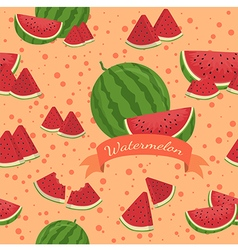 Watermelon Seamless Pattern Banner vector image vector image