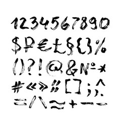 typographic characters and symbols in calligraphy vector image