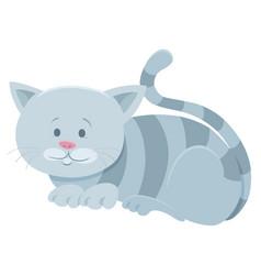 Cute gray tabby cat cartoon animal character vector