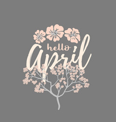 hello april card with cherry blossom spring flower vector image