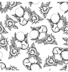 Seamless monochrome pattern of tomatoes vector image