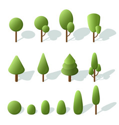 set trees isometric 3d trees for landscape design vector image