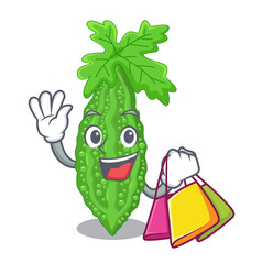 Shopping bitter melon gourd on shape cartoon vector