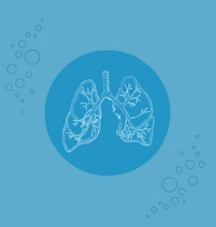 White human lungs and bronchi on substrate vector