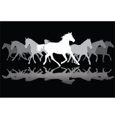 White Trotting horses silhouette on black vector