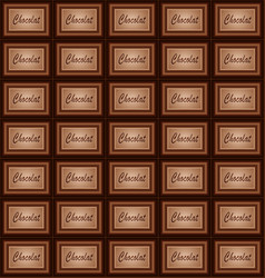 chocolate plate and pieces background vector image