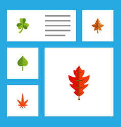 Flat icon maple set of leaf aspen hickory and vector