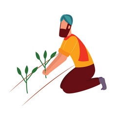 Indian farmer man kneeling and holding crop plant vector
