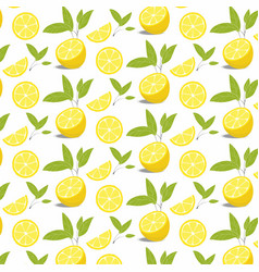 pattern of lemon slices with leaves vector image