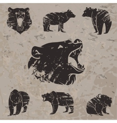 Set of different bears 3 vector image vector image
