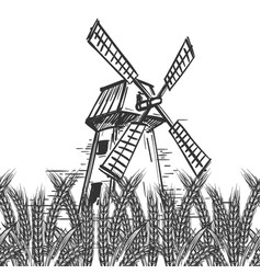 farm landscape with mill and wheat vector image vector image