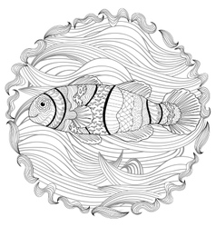 Clownfish with high details vector