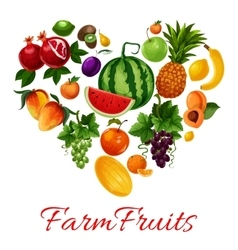 Farm fruits icons in heart shape vector image