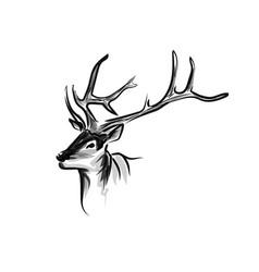 Ink sketch head deer vector
