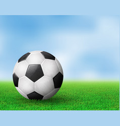 realistic soccer ball on field from side view eps vector image
