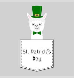 St patrick day llama alpaca face head vector