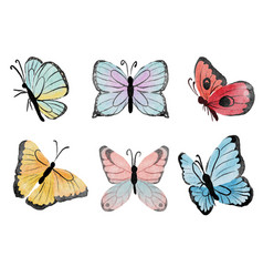 Watercolor hand drawn colorful butterfly vector